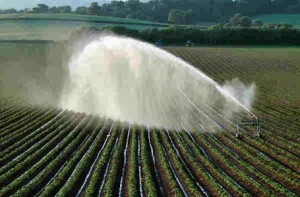Irrigating_fields_SW_of_Killerton_Estate_resized